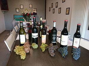 Cépages en vin et en raisins